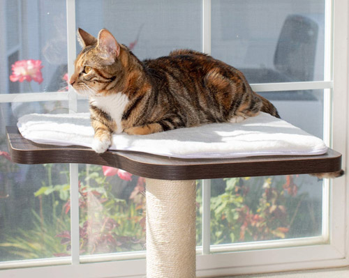 best cat window petfusion ultimate cat window climbing perch 45 inches tall